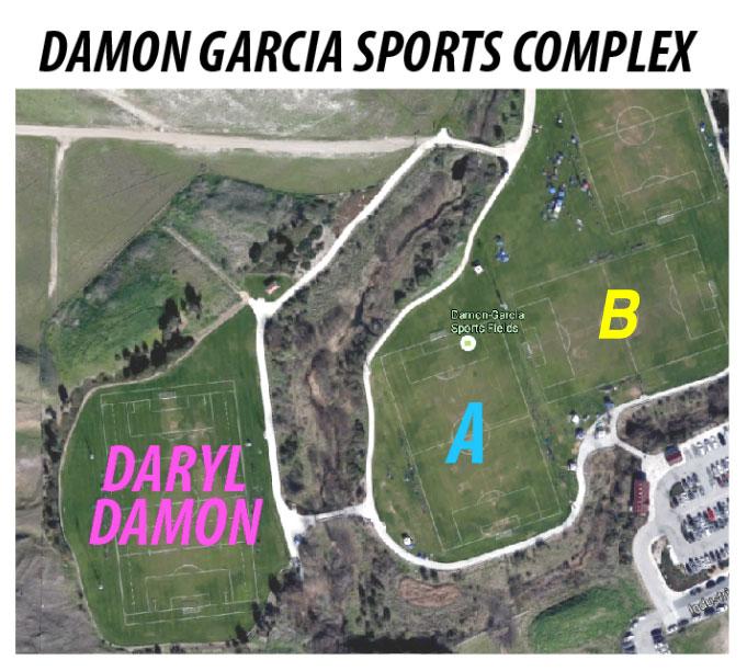 damon-fields